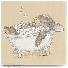 Illustrative purposes - Rabbits don't enjoy baths.