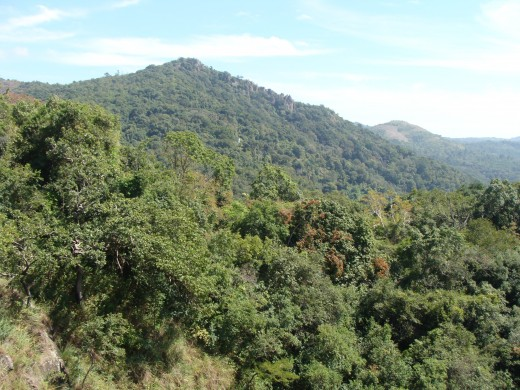 THE QUEEN OF MOUNTAINS ' - KODAIKANAL View 3