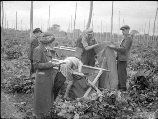Hop-picking in Kent, 1944