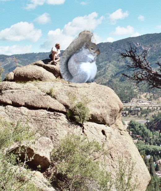 Mastger Squirrel Meditates for world peace.  This is the actual boulder.