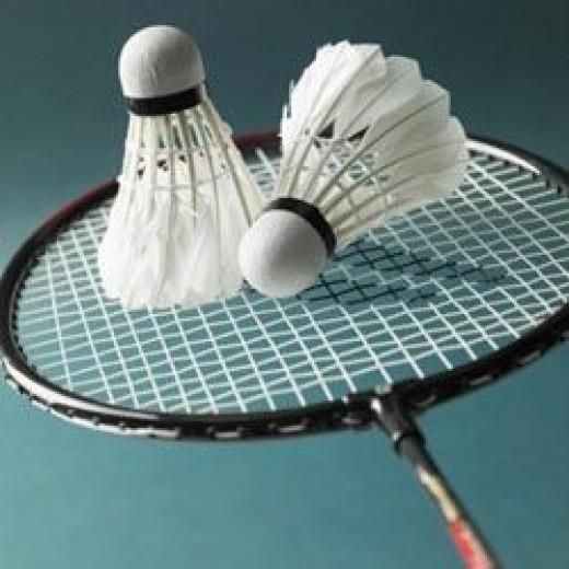Badminton Racket and Birdies