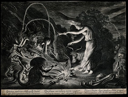"A witch at her cauldron, being guided by ""beasts"" and probably using a poison or two..."