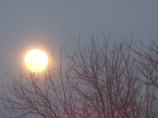 Moon beams bathe the landscape...