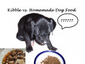 Dangers of Feeding Dogs a Homemade Diet Nutritionists Want You to Know