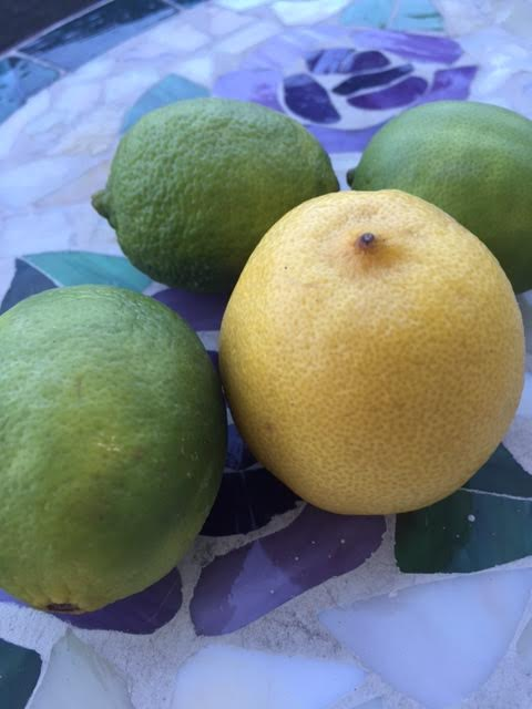 Three limes and one lemon from the kitchen.