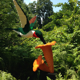 Hummingbird with Flower by artist Sean Kenney