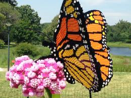 Monarch on Milkweed by artist Sean Kenney