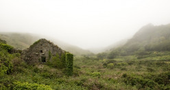Abandoned hut in the fog