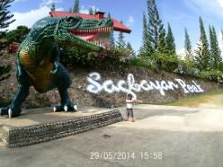 A Trip to Sagbayan, Bohol from Bato, Leyte: Visiting Sagbayan Peak