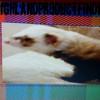 Highlandproduct profile image