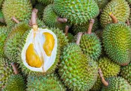 FEEL and TASTE the power of Durian (Durio Zebithenus)