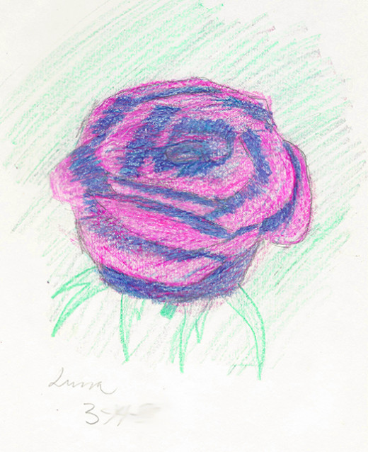 Colored pencil rose, student age 13.