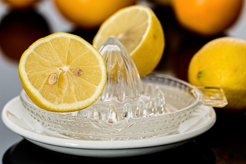 Lemon Squeezer - Lemon Juice - Citrus