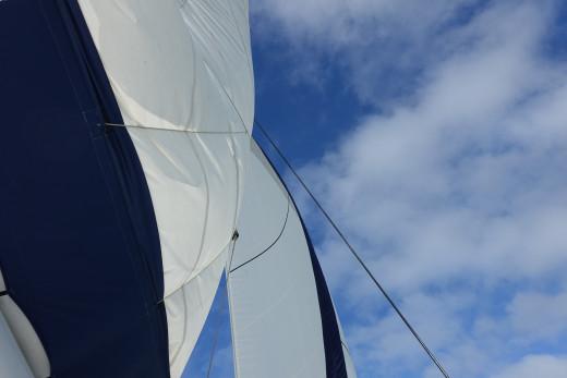 Nicely set sails