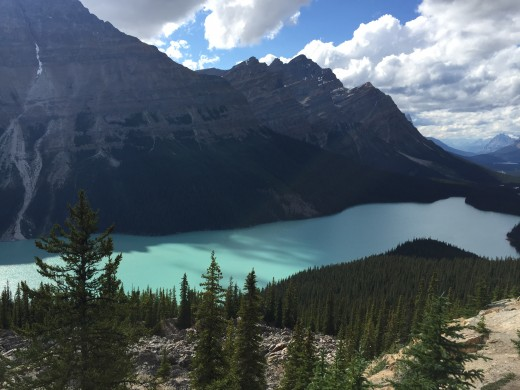 View of Peyto Lake from the end of the trail to Bow Summit.  Banff National Park, Canada