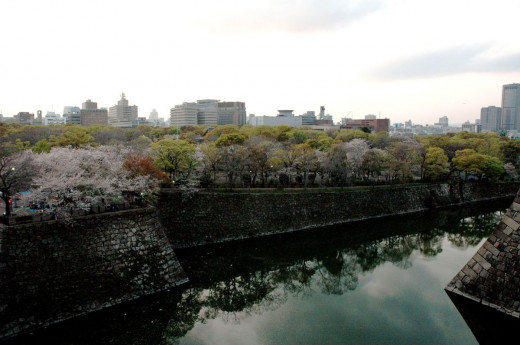 Cherry blossoms at Osaka Castle Gardens Osaka Japan