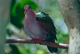 Taken at North Queensland Australia