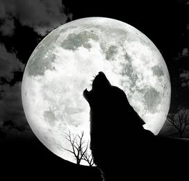 Superstition: Werewolf appear at site of full moon