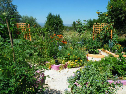 After a couple of years we build our herb and vegetable garden. Completely off the Grid