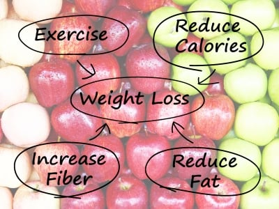 Weight Loss Diagram