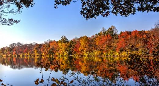November on the lake
