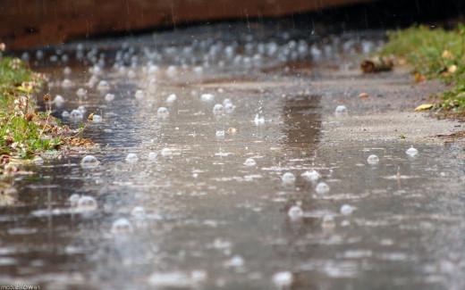 Rain on path
