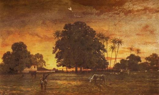 Sunset Queen Savannah