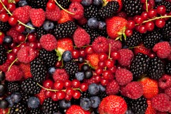 Which is More Effective: Acai or Berry or Slim Fast Diet