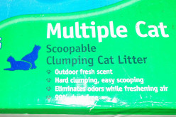 Ten ways to use kitty litter besides in the litter box