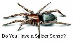 Do you have a spider sense?