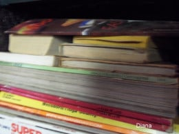 Assorted magazines become a reference source when not collecting dust. Online versions are helpful to reduce clutter. But there is something about actually holding it in your hands that seem more appealing.