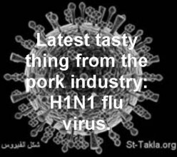 How to Prevent Influenza A H1N1 Virus