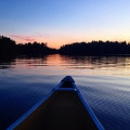 Where Did Algonquin Park Come From?