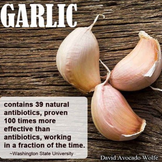 Garlic (Allium sativum) is a plant used as a food as well as a folk medicine for centuries by different cultures. can be used as natural treatment against autoimmune diseases; Rheumatoid Arthritis (RA), Systemic Lupus, Hashimoto's Thyroiditis, HIV