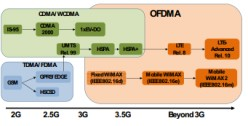 OFDM/OFDMA in Wireless Communication Systems