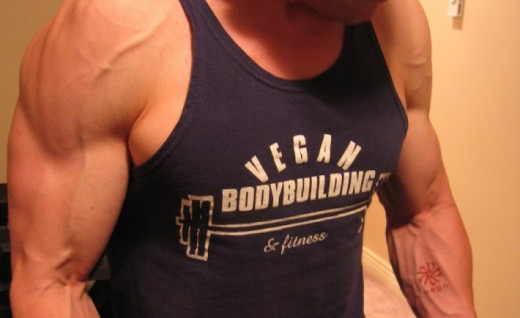 Robert Cheek - vegan bodybuilder