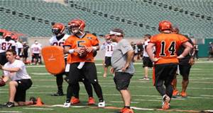 Andy Dalton and AJ McCaron running QB drills.