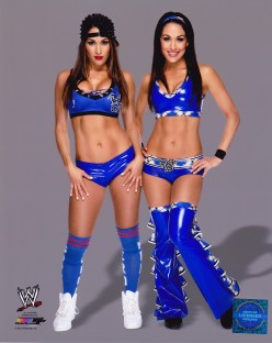 Top WWE Divas currently on the Roster