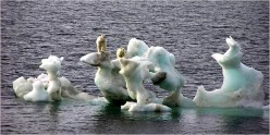 Global Warming 13-Science Panel Says Global Warming is Unequivocal