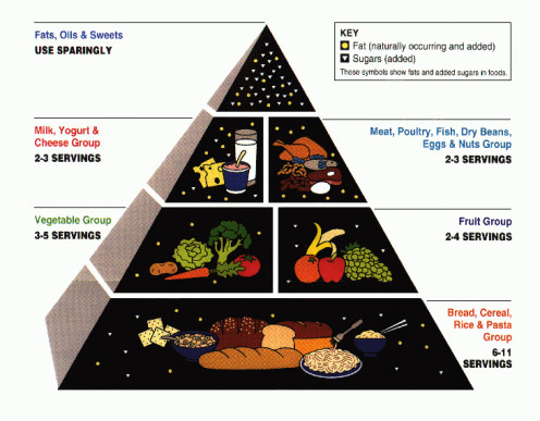 Following the Food Pyramid chart to lead a healthy eating lifestyle