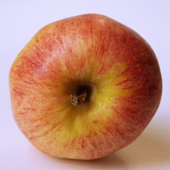 What's The Problem With Allowing Gay People Serve In The Military?