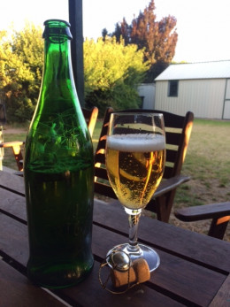 Stella in a fancy bottle