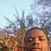 petr mwale profile image