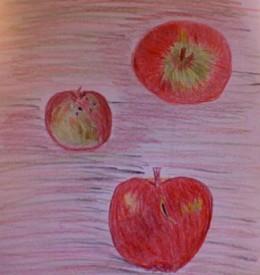Organic apples from Madison Farmer's Market. Color Pencil Sketch by Mirna E. Santana