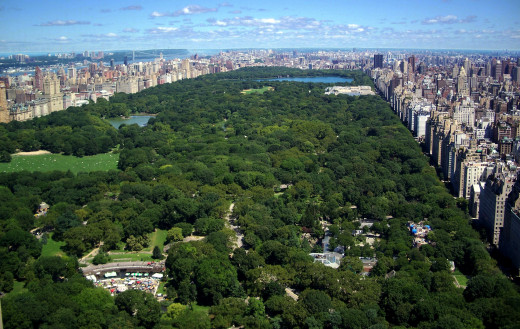 New York's Central Park.  The location of Hank's and Evan's last mission.