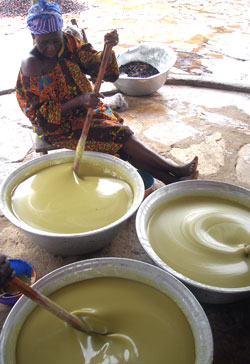 The Shea butter making process is first began by extracting the butter using a pestle and mortar or by machine. Then, the butter is roasted and boiled with water Finally, the product is complete after the butter is.