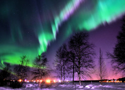 Ethereal display of colored reddish or greenish lights shimmering across the night sky.