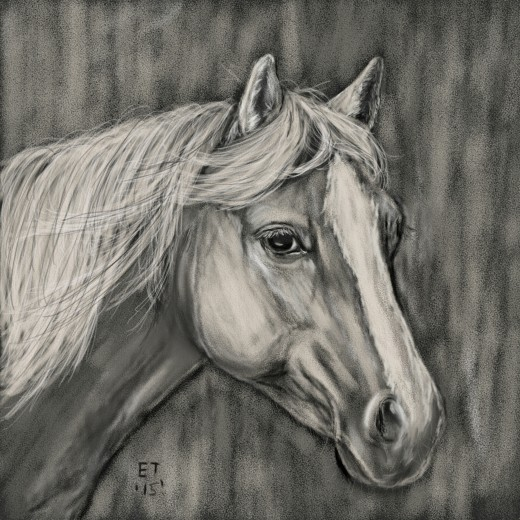 'Palomino Horse' Prints are available at http://www.artpal.com/ellietaylorart