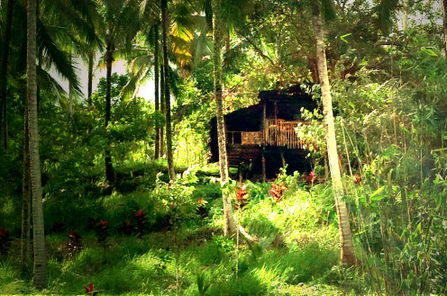 Elderly Couple's Nipa Hut House