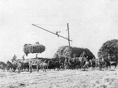 Mormon Farmers